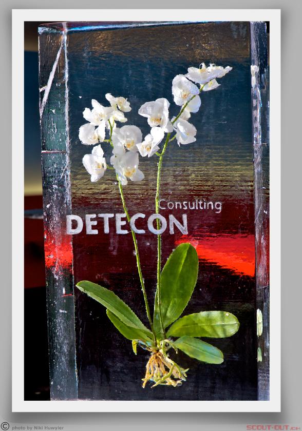 Detecon_curl